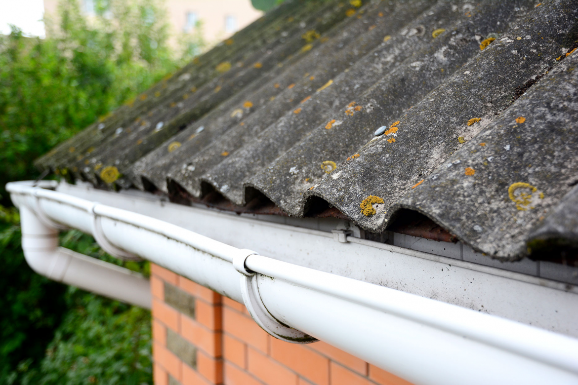 Preventative Measures You Can Take to Protect Your Roof